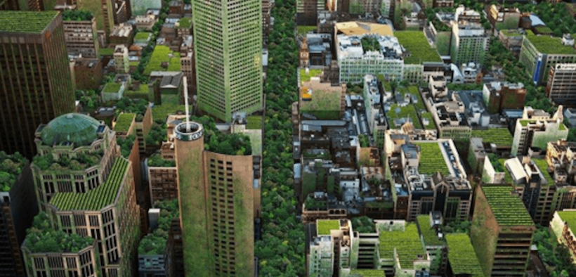 Eco Edition_The Industry Developer_Architects Rally_Sustainability News