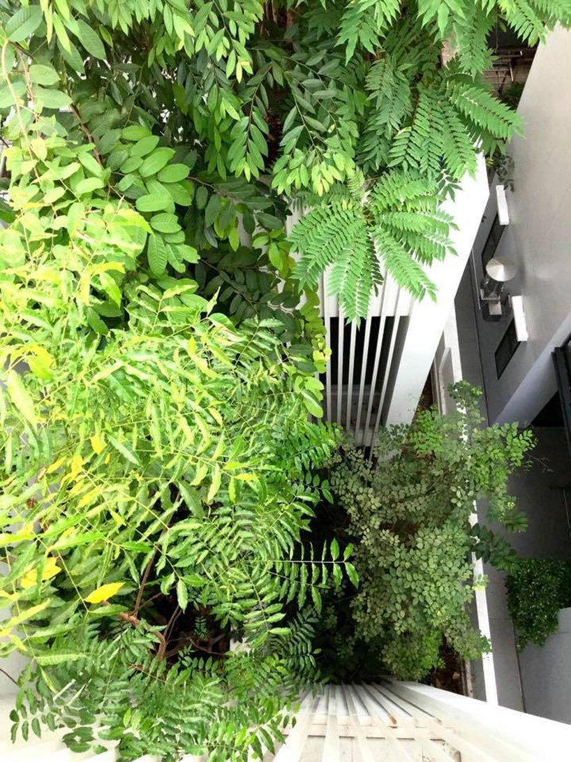 Eco Edition_SHMA Designs_Forest House_Sustainable architecture interiors 21-min