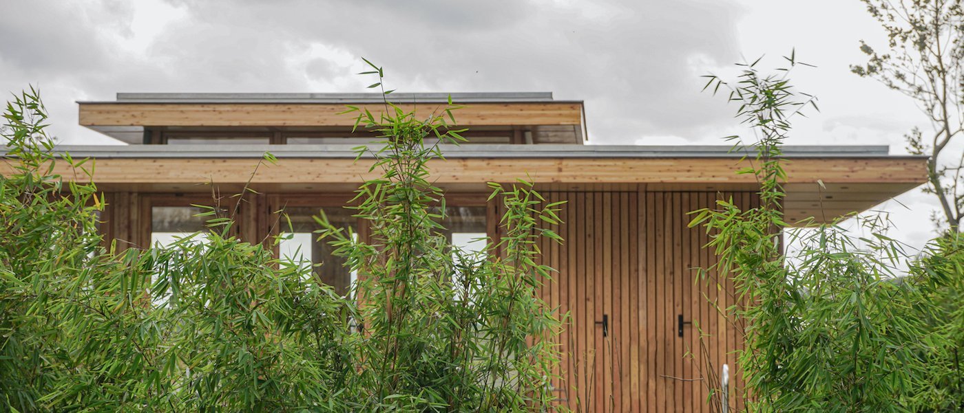 Timber home surrounded by trees
