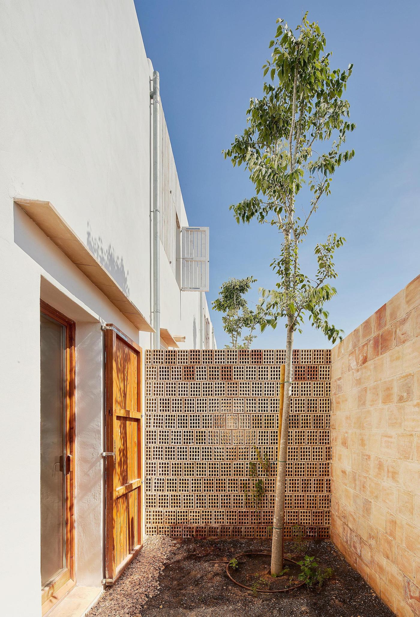 Breeze block courtyard with tree and recycled timber doors