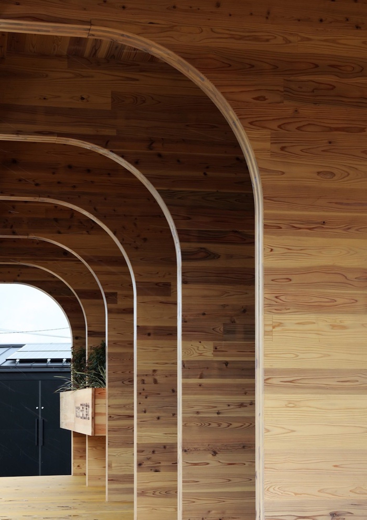 Arched CLT cross laminated timber