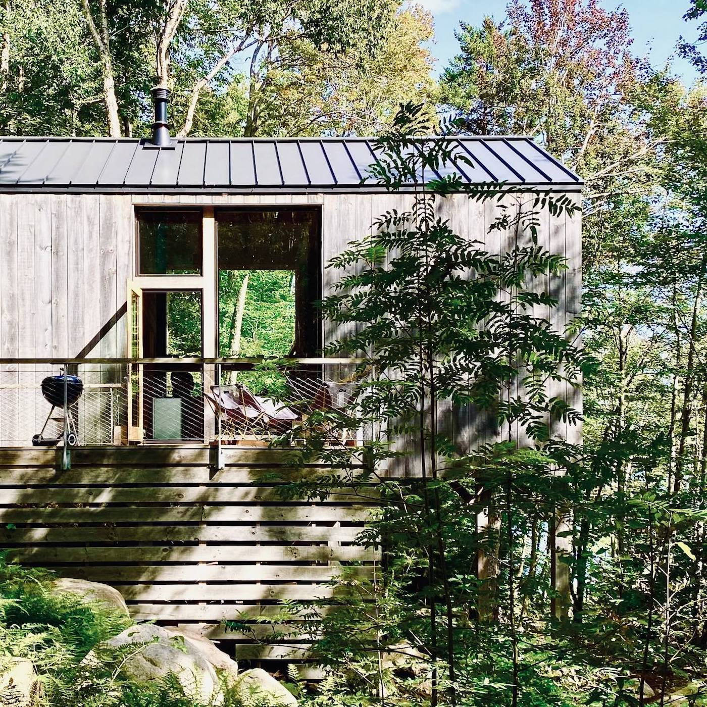 Timber clad off-grid cabin in the woods