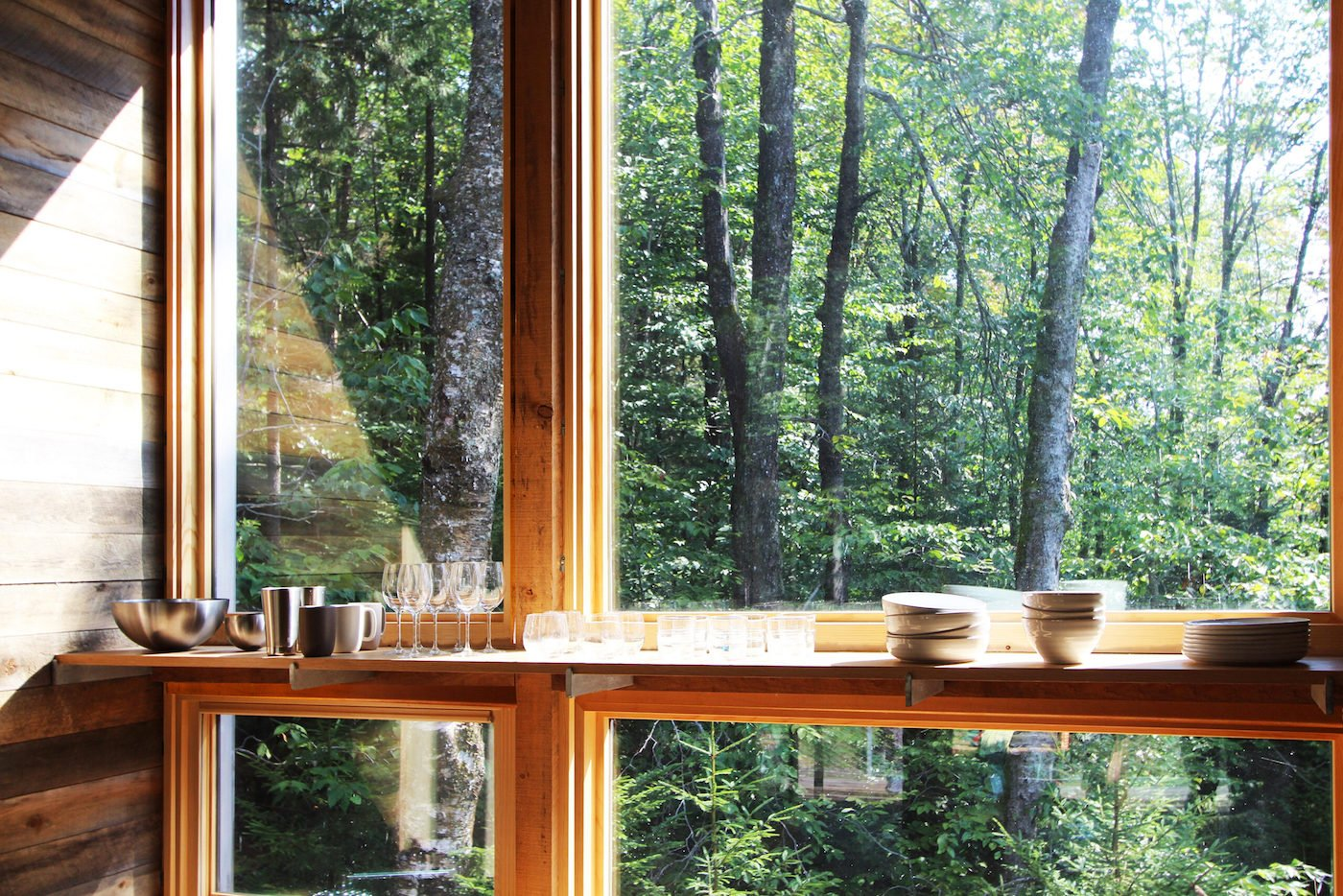 View of woods from timber cabin