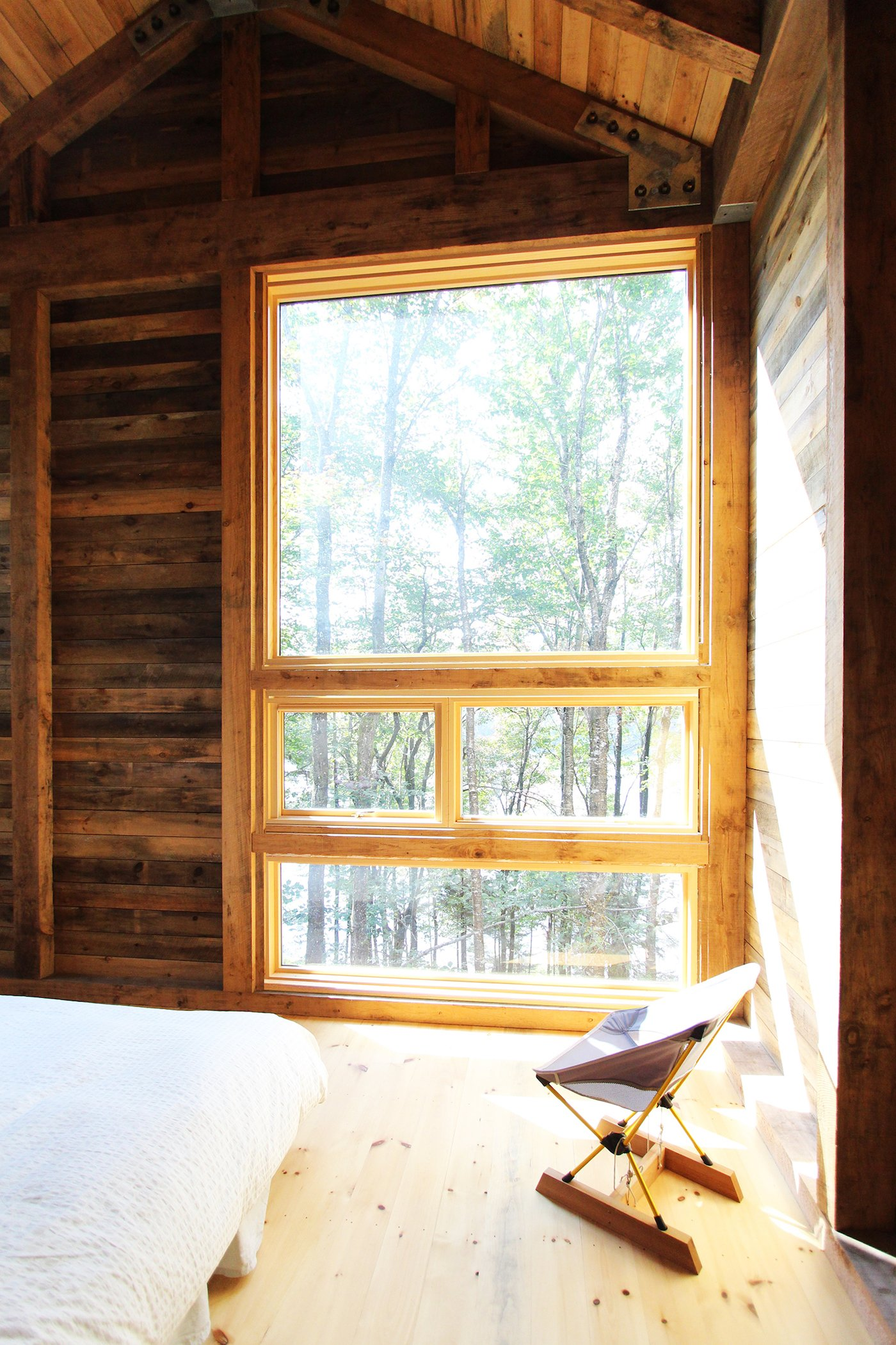 Timber lined bedroom with view to woods
