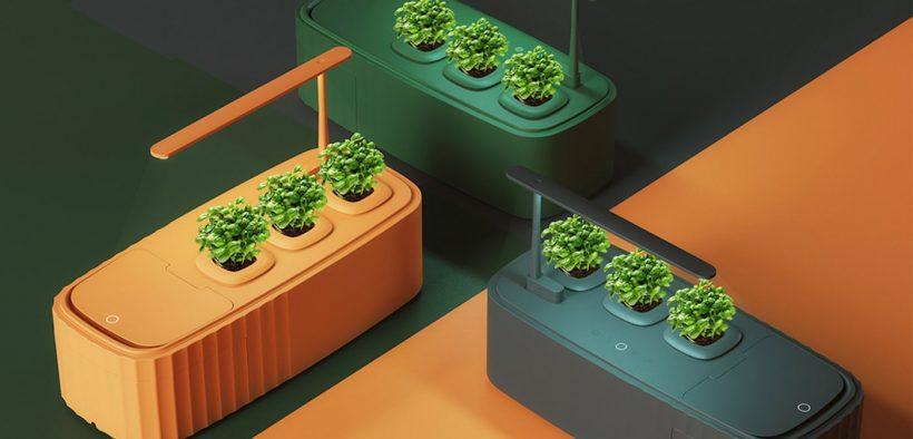 Indoor vegetable garden and compost bin