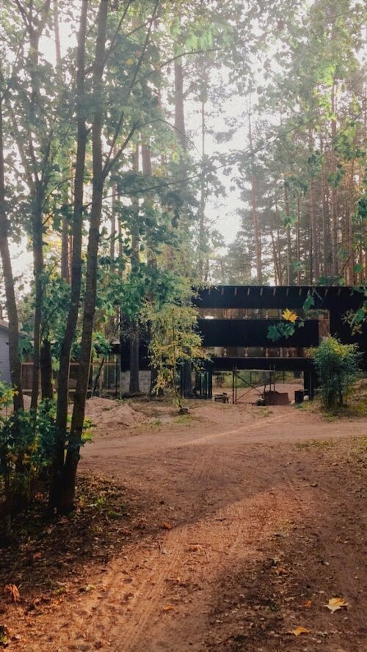 View through the forest towards black timber clad home