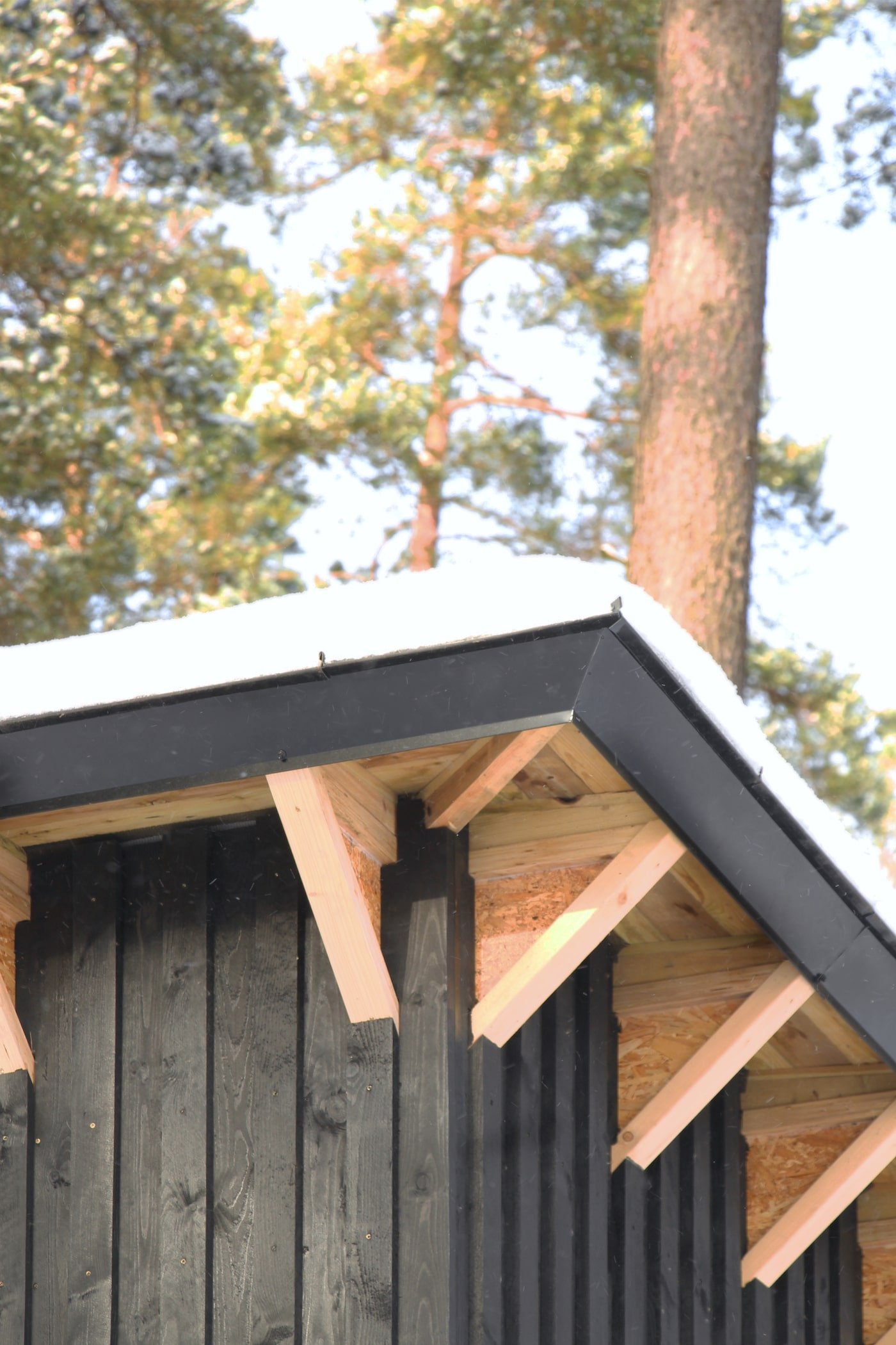 Close up view of peaked roof and timber structure