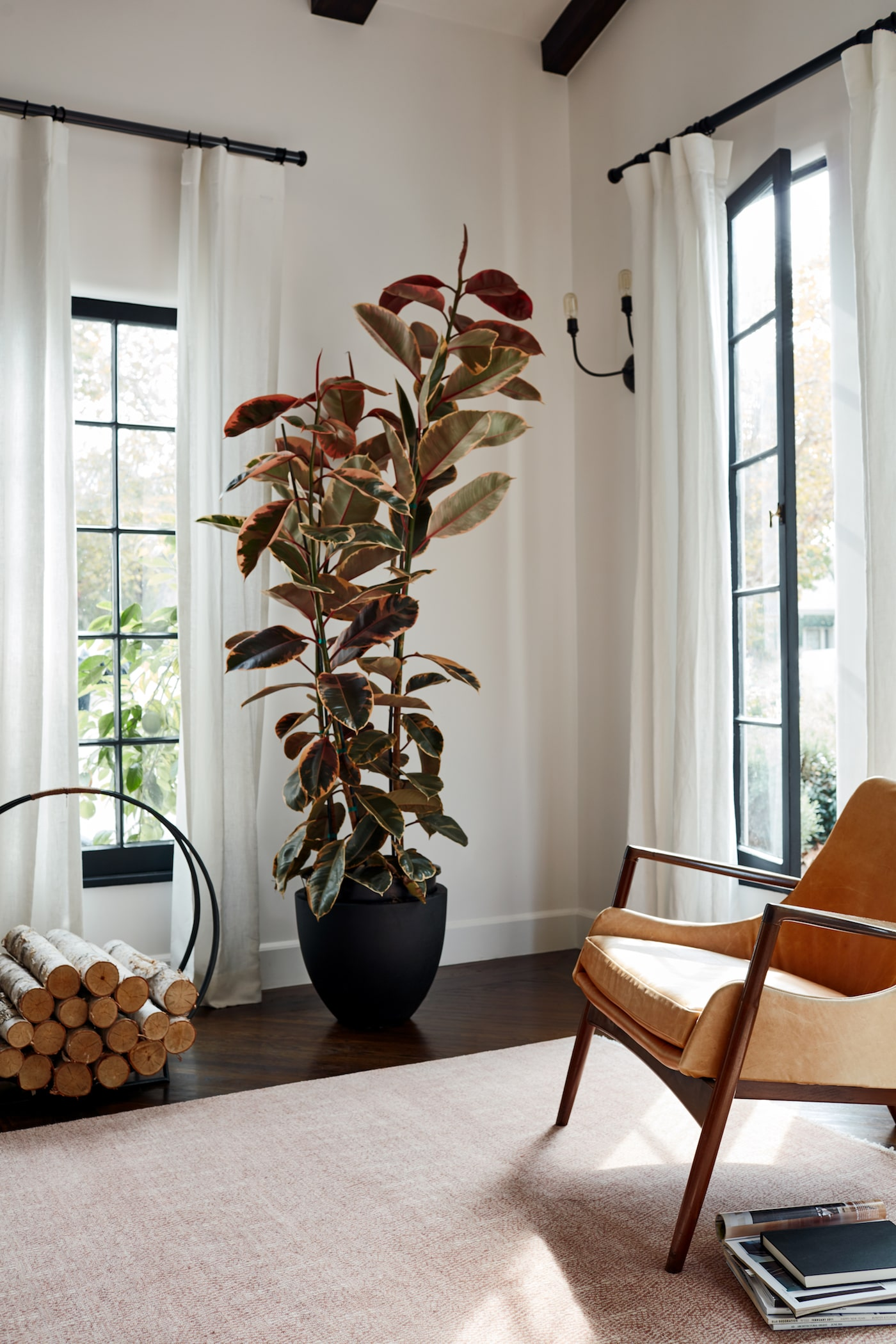 Soft prink rug in loungeroom